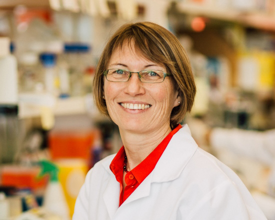 Professor Ruth Ganss at Harry Perkins Institute of Medical Research