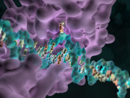 DNA methylation is one form of epigenetic modification.
