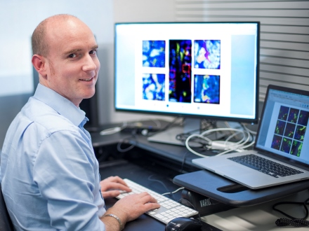Cancer researcher Dr Edwin Hawkins at WEHI